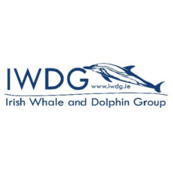 Irish Whale and Dolphin Group